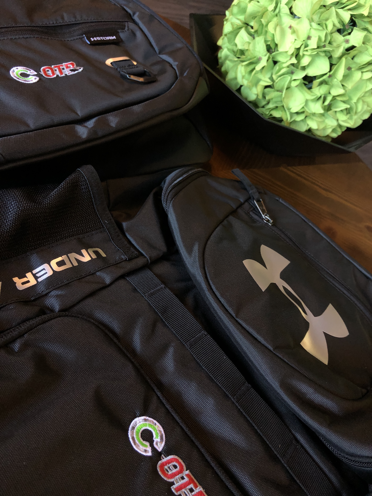 Under Armour Backpack Bags